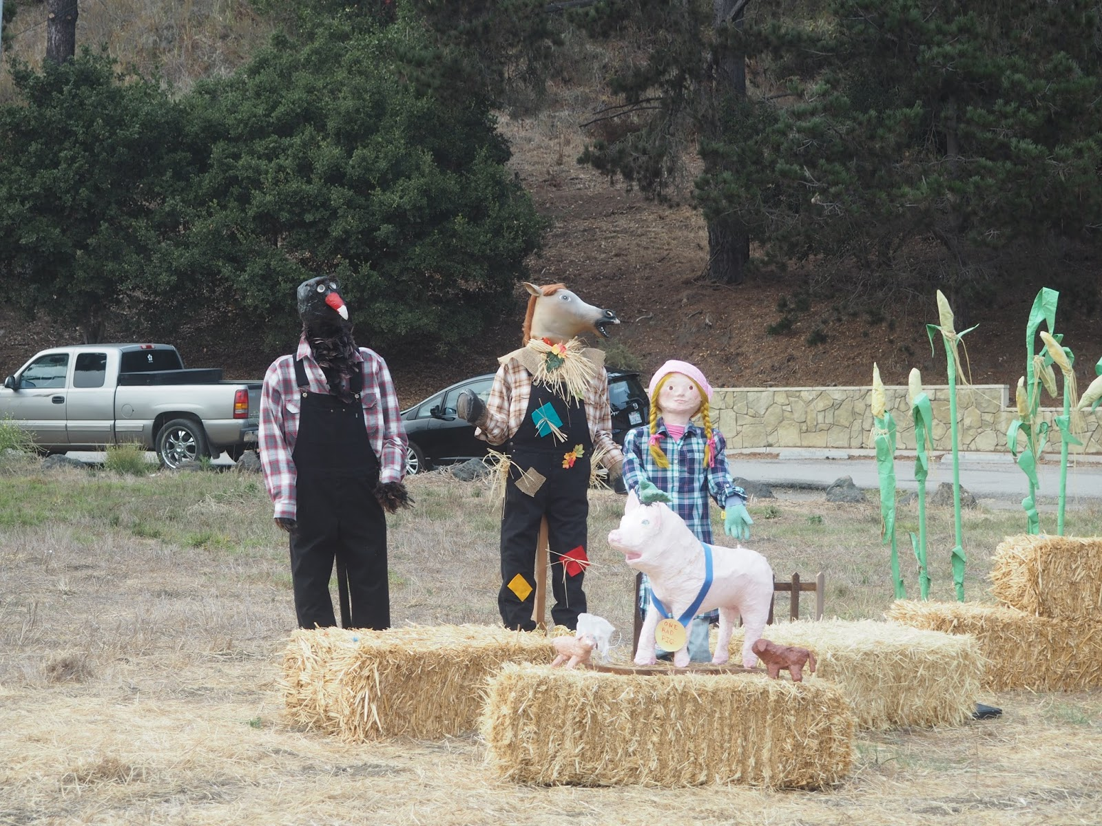 Scary scarecrows