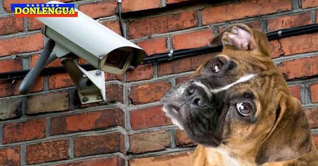 Régimen activó 1600 cámaras de vigilancia para vigilar al Sistema Eléctrico Nacional