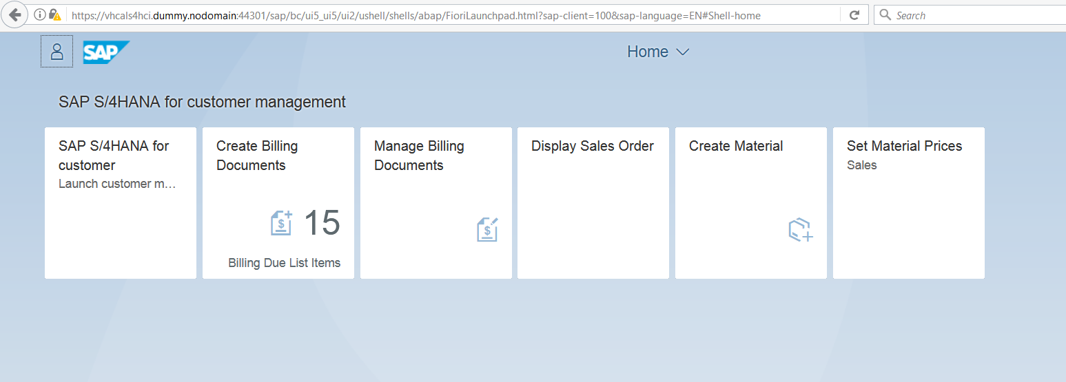 SAP S/4 HANA for Customer Management: How to access your
