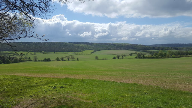 A view from Wendover Woods over the Chiltern AONB. It really is a beautiful area.