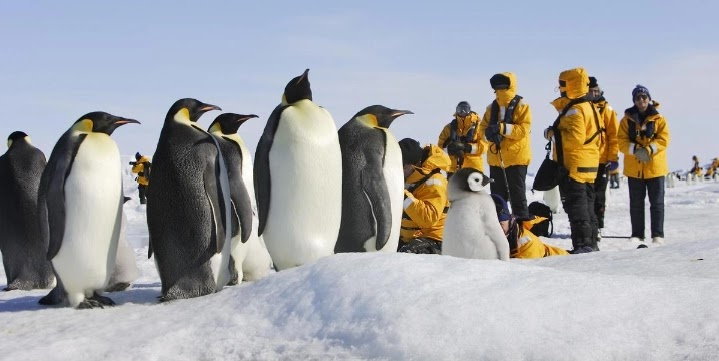Long stay at the Antarctic causes a brain contraction