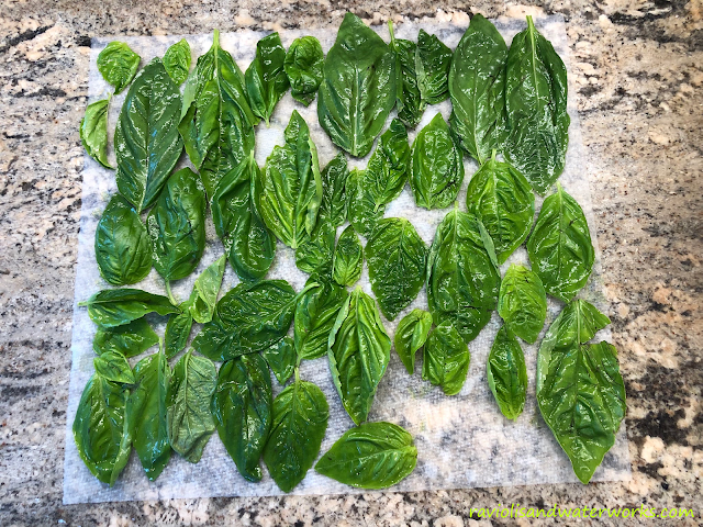 how to preserve fresh basil; freezing basil; garden basil; sweet basil; how to save basil for the winter