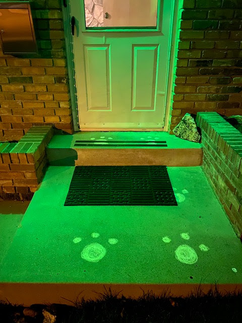 bunny prints in your driveway