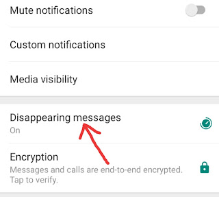 WhatsApp Disappearing Messages off Kaise Kare