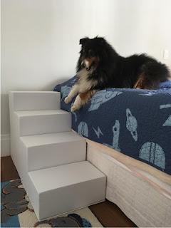 escadas cães em camas altas