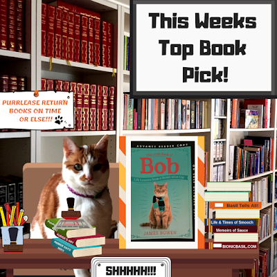 Amber's Book Reviews What Are We reading This Week -  The Little Book of Bob    Life Lessons from a Street-wise Cat @BionicBasil®
