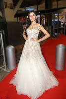 Rukshar Mir designer Anarkali Gown at 64th Jio Filmfare Awards South  2017 ~  Exclusive 116.JPG