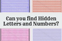 Picture Puzzles in which you have to find hidden numbers or letters