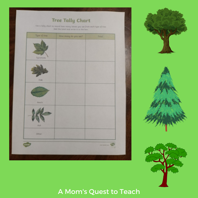 Tree Tally Sheet from Twinkl; three tree clip arts