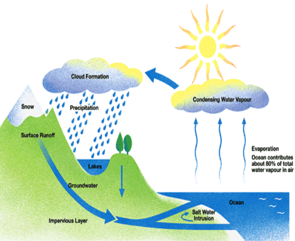 hight resolution of  ielts writing task 1 d ng process sample water cycle h i b nh nguy n