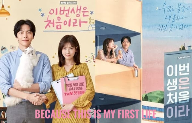 Download Drama Korea Because This Is My First Life Batch Subtitle Indonesia
