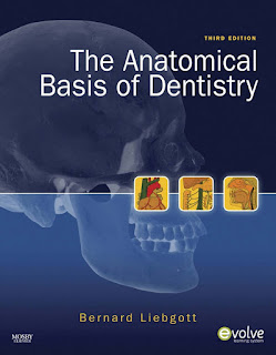 The Anatomical Basis of Dentistry 3rd Edition