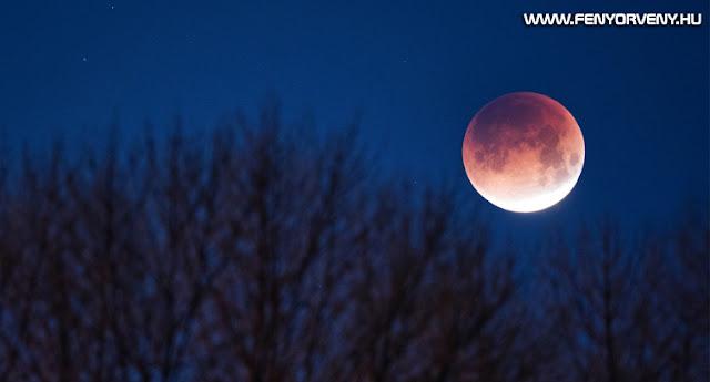 Részleges holdfogyatkozás - 3 órán keresztül csodálhatjuk a Holdat