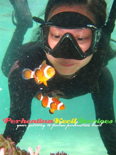Pakej Pulau Perhentian Terengganu 2017