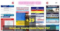 Abroad Vacancies Daily News Paper PDF Sep11