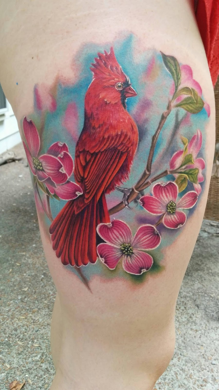 Tattoo Idea Bird: Awesome Inks: Tattoo Ideas, Inspiration, And Information