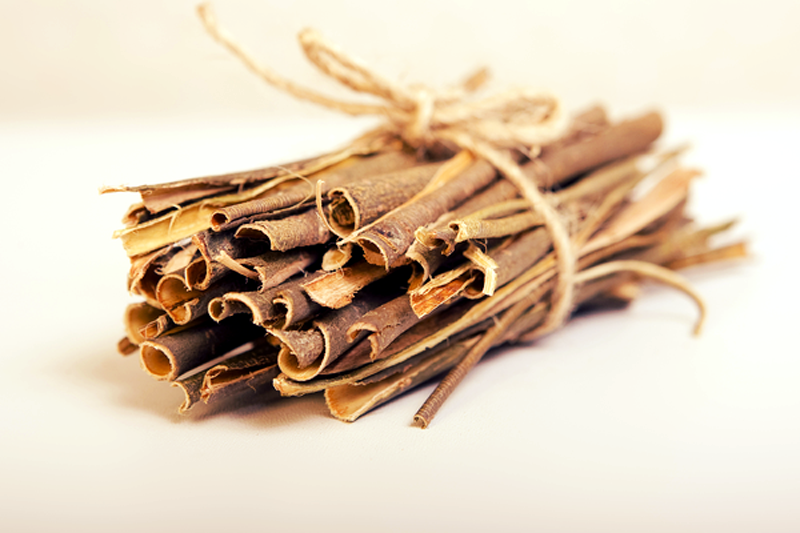 11 Natural Herbs and Plants for Headache Treatment