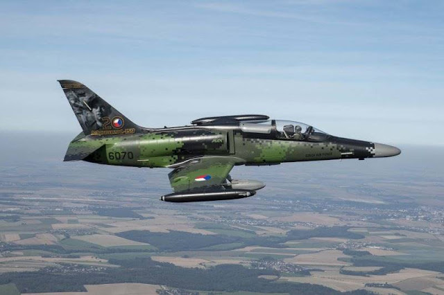 Czech Air Force L-159 receives special livery to celebrate aircraft's 20 years service