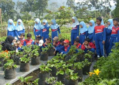 Wisata Edukasi untuk anak-anak