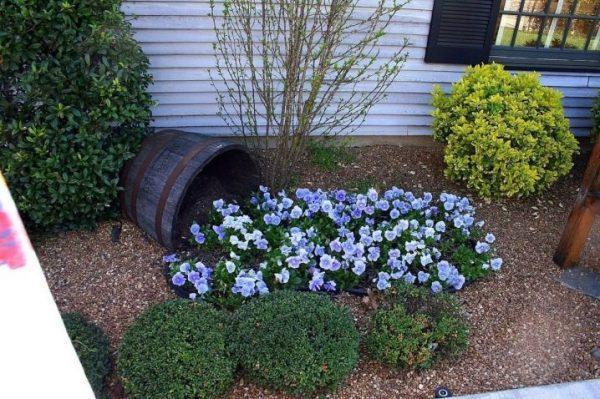Shady Garden Corner Ideas