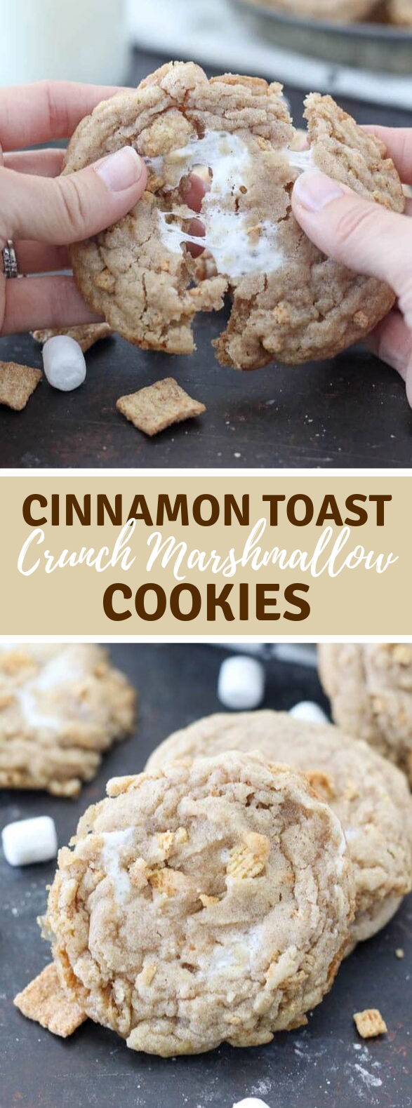 Cinnamon Toast Crunch Marshmallow Cookies #desserts #ooeygooey