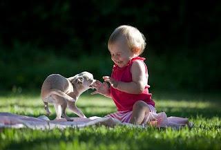 Foto de bebe y animal