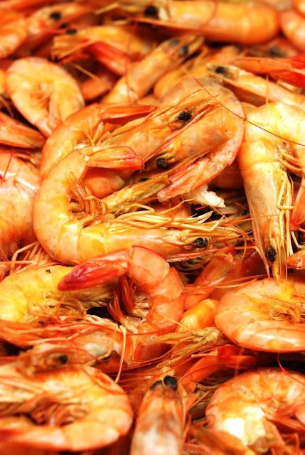 Spanish Boiled Shrimp - 2