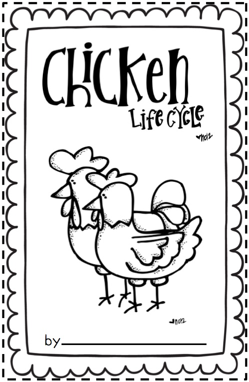 Free First Grade Worksheets For Life Cycle Of A Chicken
