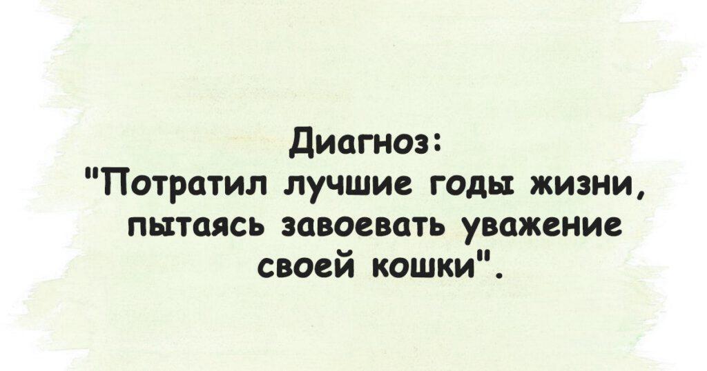 ТОП-15 Жизненных Анекдотов