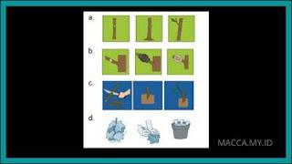 Soal PTS IPA Kelas 6 SD Semester 1 dan Kunci Jawaban