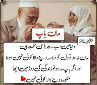 20 Mothers Day Quotes in Urdu