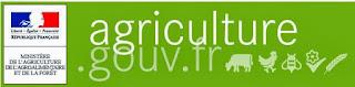 http://agriculture.gouv.fr/
