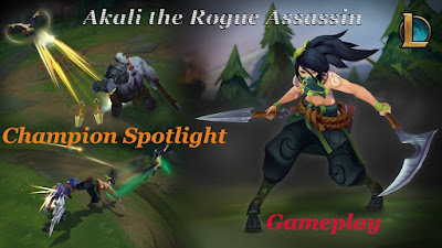 Champion Spotlight