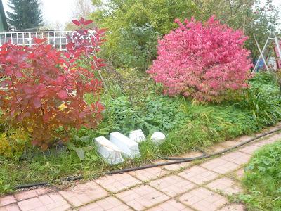 осень в фотографиях