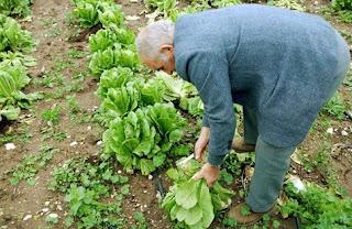 «τσεκούρι» σε όσους έχουν αγροτικό εισόδημα