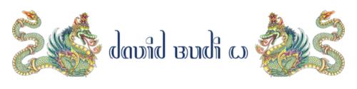 David Budi Wartono