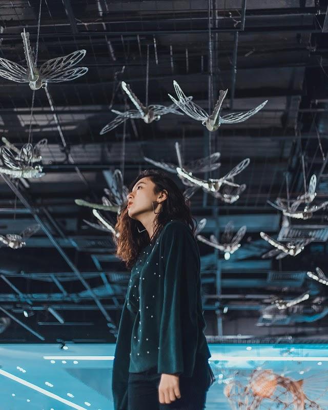 Hunt for 'virtual living' art spaces in Hanoi