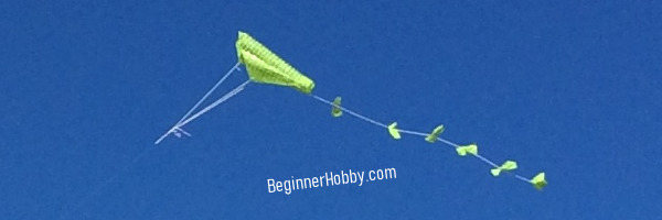 An Image Of Our DIY Kite Flying