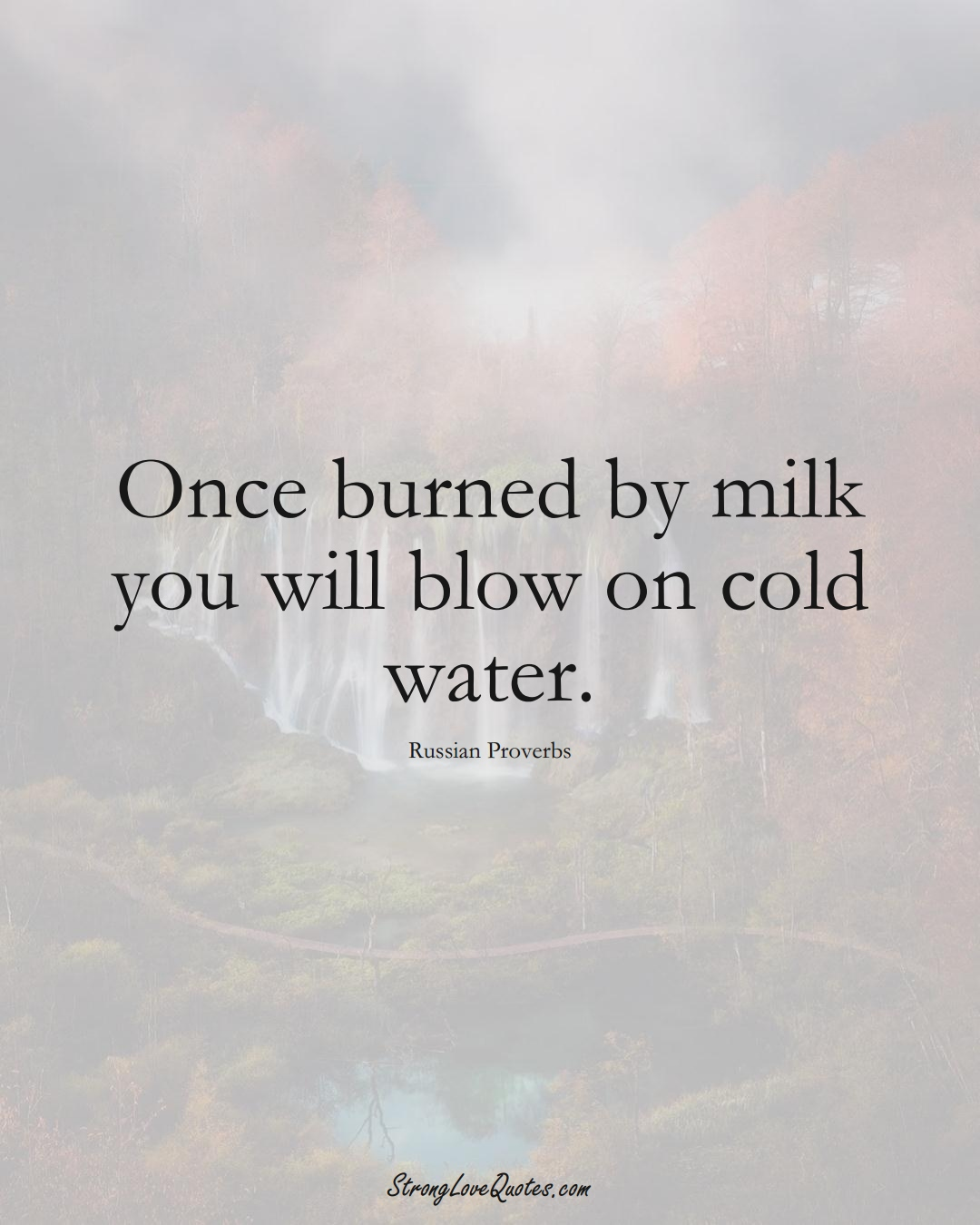 Once burned by milk you will blow on cold water. (Russian Sayings);  #AsianSayings