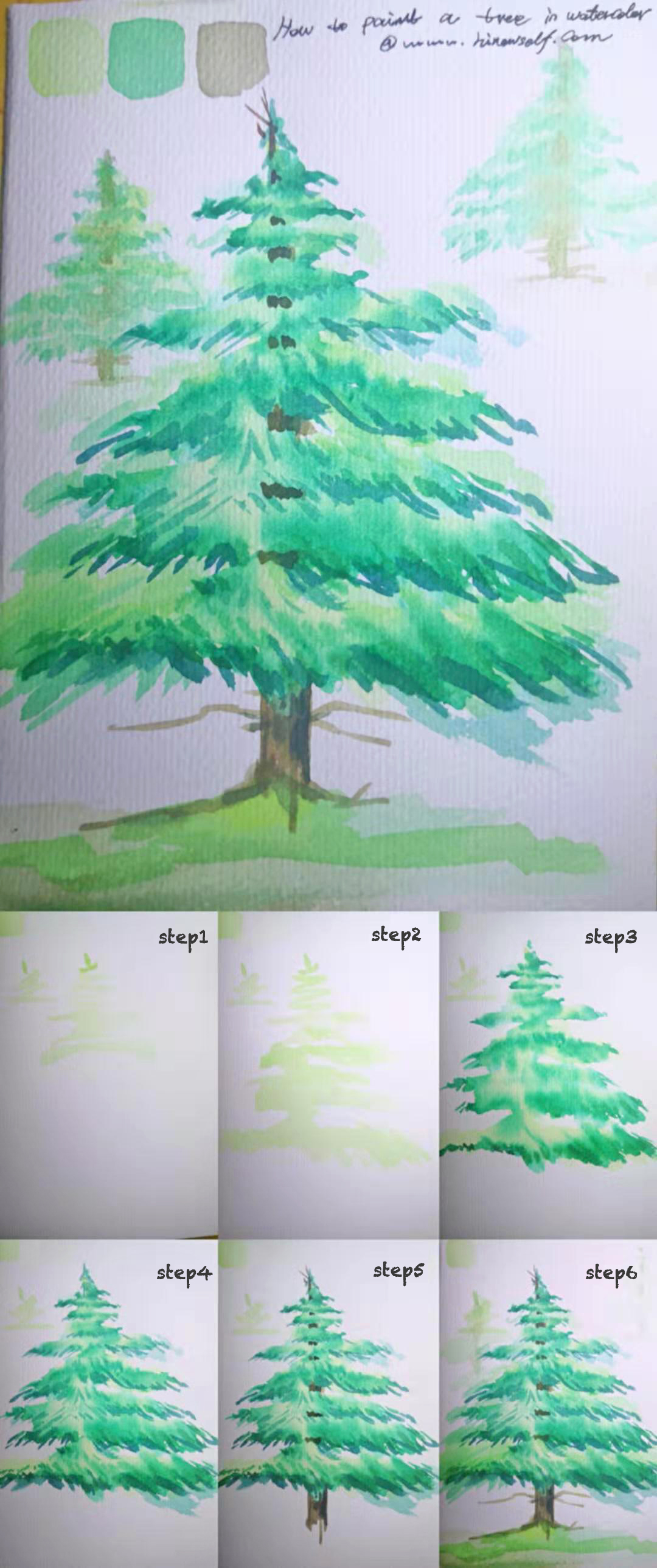 How to draw Watercolor pine Tree for beginner