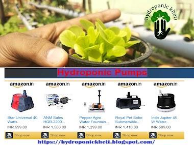Hydroponic Pumps | Hydroponic Kheti | Hydroponic Farming | Hydroponic Farming In Ranchi