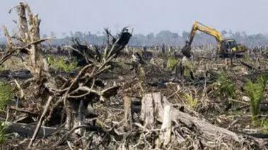 """Eksploitasi besar besaran sumberdaya alam mengakibatkan ekosistem yang kehilangan daya dukungnya. Pemanfaatan lahan untuk usaha dan perkebunan yang tidak dilakukan dengan AMDAL ( Analisis Mengenai Dampak Lingkungan) yang baik tanpa reklamasi semakin membuat rusaknya ekosistem kian parah. Terjadinya bencana alam akhir akhir ini atau diawal tahun 2021 merupakan kebijakan dari sietem kapitalis yang mengeruk hasil Alam tanpa memperhatikan dampaknya. Allah berfirman dalam QS .Ar Ruum ayat 41 """" Telah nampak kerusakan dan didarat dan dilaut akibat perbuatan tangan manusia, Allah menunjukkan kepada mereka sebagian dari akibat perbuatan mereka agar kembali ke jalan yang benar""""."""