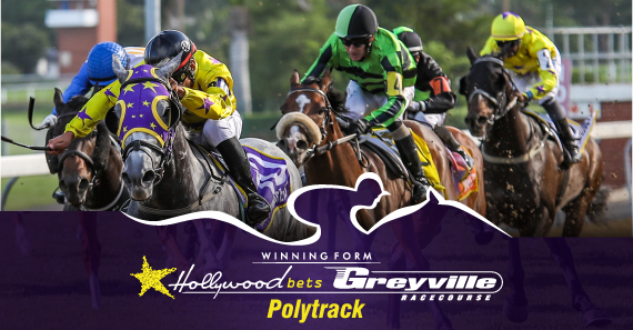 Hollywoodbets Greyville Best Bets - Monday 4 January 2021