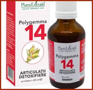 Polygemma 14  Articulatii si Detoxifiere Plantextrakt a folosit cineva