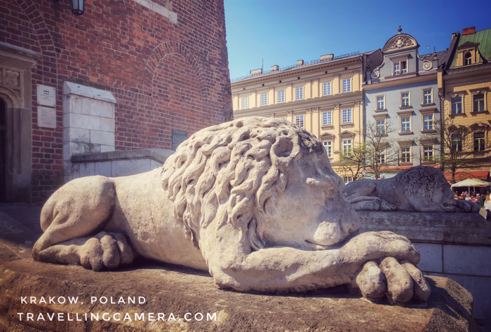 This is probably a rare lion which is clicked a lot in front of the Town Hall Tower of Krakow. This is beautifully built and I noticed lot of kids getting clicked with it. These are two of them in front of the entry gate of Town Hall Tower.