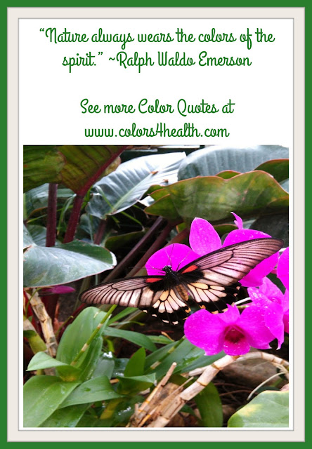 Nature Quote at Colors 4 Health