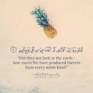 Quran Verse pics in englsih