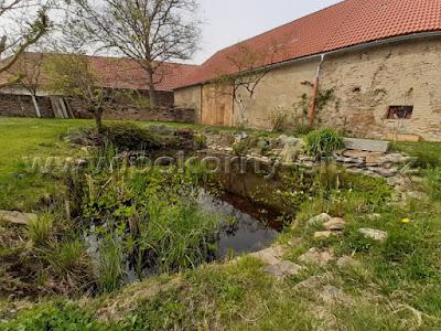 Schwimmteich, Badeteich, Gartenteich