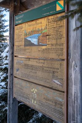 Winterwandern Mauth-Finsterau  Reschbachklause – Siebensteinkopf  Nationalpark Bayerischer Wald 07