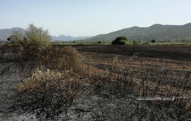 Φωτιά στο Ζερβοχώρι Παραμυθιάς, έκαψε 40 στρέμματα γεωργικών εκτάσεων